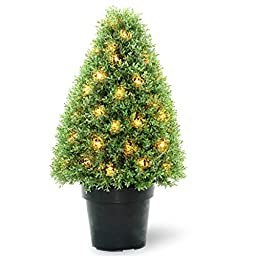 National Tree LBX4-300-30 Boxwood Tree with Dark Green Growers Pot and 50-Clear Lights, 30-Inch