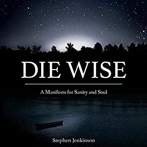 Die Wise Audiobook