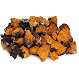 Chaga 1 LB (16 oz) Small Chunks Wild Harvested Canadian Chaga - Only the Best - Mushroom Tea Chinese Medicine