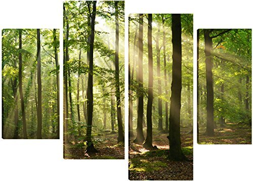 glorious-sunrays-through-the-forest-canvas-art-4-split-panel-design-71cm-x-101cm-free-hanging-kit-in
