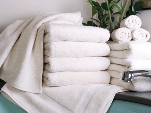 Lifekind Certified Organic Cotton Twill Hand Towel - Ivory (550-Gram Weight) front-690005
