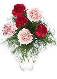 Cute 12 Red and Pink Carnations Bouquet with Greens from KaBloom, With Vase