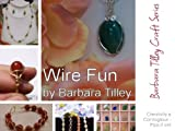 Wire Fun: A step by step guide to beginning wire wrapping (Barbara Tilley Craft Series)