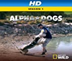 Alpha Dogs [HD]: Michigan Impossible [HD]