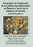 Estrategias de Integracion de La Cadena Agroalimentaria En Tlaxcala a Partir de La Calabaza de Castilla (Cucurbita Pepo L.)