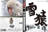 雪猿 ~The SnowMonkey~ スノーモンキー DVD