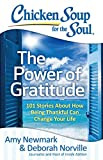 img - for Chicken Soup for the Soul: The Power of Gratitude: 101 Stories about How Being Thankful Can Change Your Life book / textbook / text book