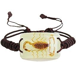 Glow In The Dark Scorpion Bracelet - Encased Bug In Block Adjustable Jewelry