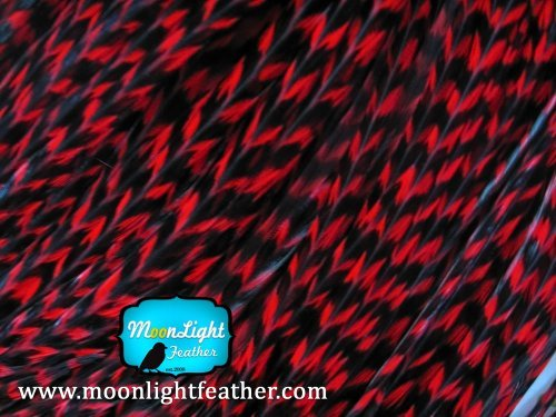 hair-extension-feathers-red-thin-long-grizzly-rooster-feathers-10-pieces-per-pack-by-moonlight-feath