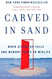Carved in Sand: When Attention Fails and Memory Fades in Midlife Cathryn Jakobson Ramin