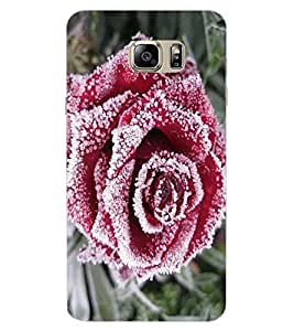 ColourCraft Beautiful Rose Design Back Case Cover for SAMSUNG GALAXY NOTE 7 DUOS