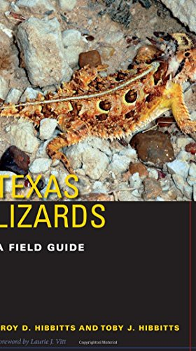 Texas Lizards: A Field Guide (Texas Natural History Guides(TM))