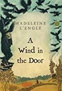 A Wind in the Door (Madeleine L'Engle's Time Quintet) by Madeleine L'Engle cover image