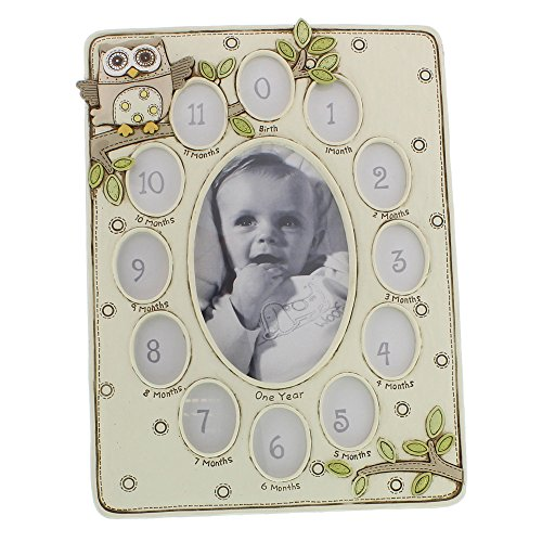 Birth To One Year Multi Picture Frame With Owl Design By Haysom Interiors