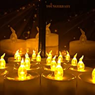 Youngerbaby 24pcs Timing Function Amber Yellow Battery Operated Candles, Flicker Flameless Led…