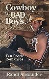 Cowboy Bad Boys: Ten Erotic Romances