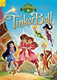 img - for Disney Fairies Graphic Novel #13: Tinker Bell and the Pixie Hollow Games by Orsi, Tea, Panaro, Carlo (2013) Paperback book / textbook / text book