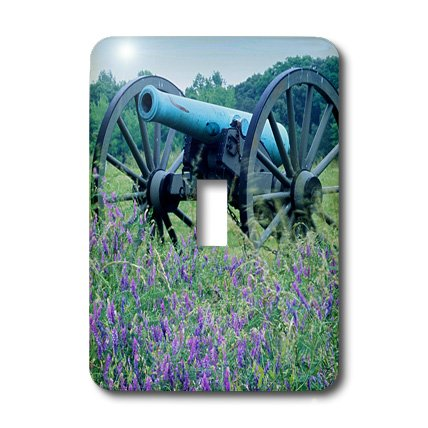 lsp_189677_1 Danita Delimont - Charles Gurche - Cannons - USA, Virginia, Petersburg National Battlefield Park, Artillery. - Light Switch Covers - single toggle switch