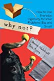Why Not?: How to Use Everyday Ingenuity to Solve Problems Big And Small [Paperback] [2006] (Author) Barry Nalebuff, Ian Ayres