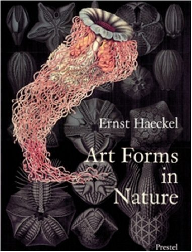 Art Forms in Nature: The Prints of Ernst Haeckel (Cabinet Of Natural Curiosities compare prices)