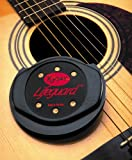 Kyser Humidifier for Acoustic Guitars