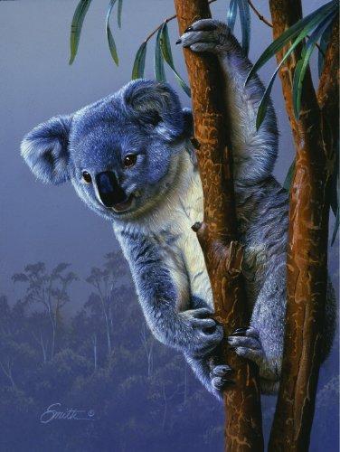 Koala 500 Piece Puzzle - 1