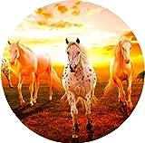 Pferde 4x 4Ersatzrad-Abdeckung (Aufkleber