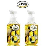 2 X Fresh Picked Meyer Lemon Gentle Foaming Hand Soap - Set Of Two
