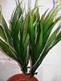 Artificial Foliage Plant Ideal for snake vivarium and offices homes M3