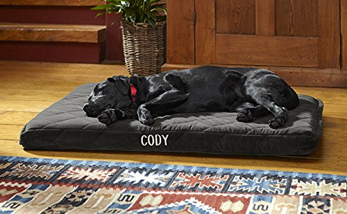 link image for Orthopedic Dog Beds
