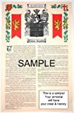 Bassoni - Armorial Name History & Coat of Arms Scroll - 11 x 17 inches (A3) - Family Crest - Genealogy - Heraldry - Heraldic