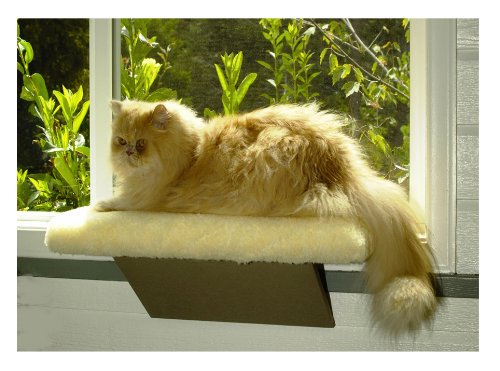 Kitty Window Perch Upto 25lbs