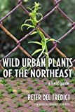 Wild Urban Plants of the Northeast: A Field Guide