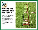 スピード養成トレーニングに!トレーニング ラダー 6m フィールドフォース