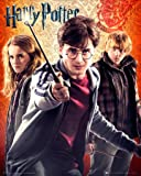 Poster Harry Potter 7 - Trio - 40 x 50 cm | Posters.de