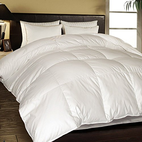 1000 Thread Count Egyptian Cotton European White Down Comforter - Full/Queen (Blue Ridge Home Fashions Inc compare prices)