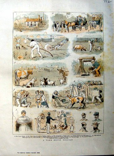 1885 Colour Print Farm Animals Water Well Sport Men