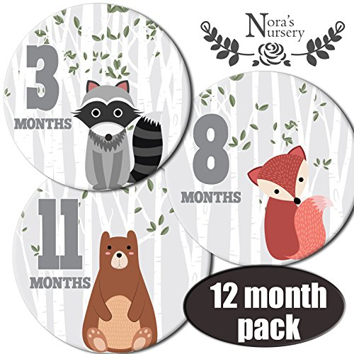 Nora's Nursery Woodland Baby Monthly Stickers (Football Diaper Cake compare prices)