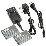 DSTE® 2pcs VW-VBX070 Replacement Li-ion Battery + Charger DC89U for Panasonic HM-TA2, HM-TA20, HX-DC1, HX-DC2, HX-DC3, HX-DC10, HX-DC15, HX-WA10 Cameras