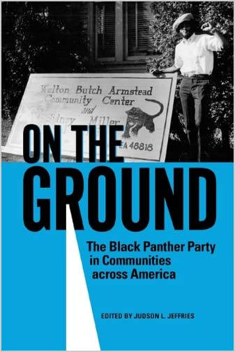 On the ground : the Black Panther Party in communities across America