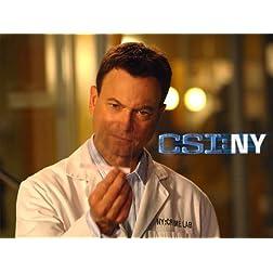 CSI: NY, Season 06