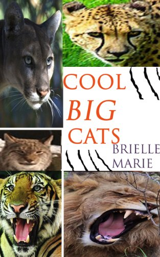 Brielle Marie - Cool Big Cats: Cool facts about cool big cats, a picture book for children about lions, tigers, cougars, cheetahs, and more! (A Children's Animal Book 1) (English Edition)