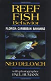 img - for Reef Fish Behavior: Florida, Caribbean, Bahamas book / textbook / text book