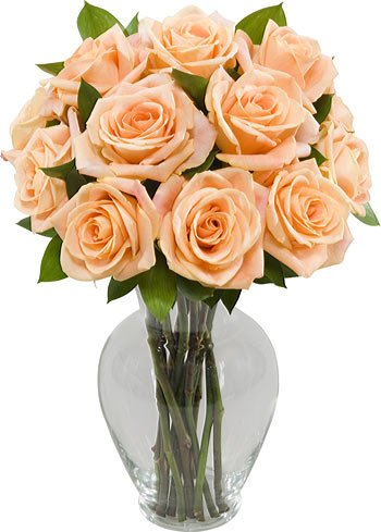 Where To Purchase One Dozen Long Stem Peach Roses With