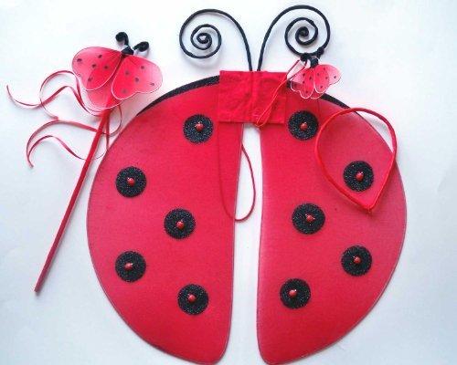 Ladybug Wing 3pc Set