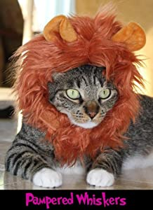 """Jungle King Lion Hat for Cats and Dogs (11-15"""")"""