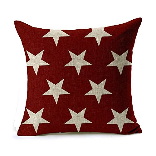51uqplBUmmL Our Favorite Amy Sia Accent Pillows