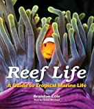 img - for Reef Life: A Guide to Tropical Marine Life book / textbook / text book