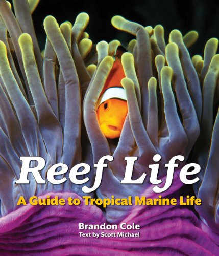 Reef Life: A Guide to Tropical Marine Life (Tropical Fish Guide compare prices)