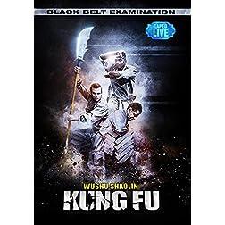 Black Belt Examination - Wushu Shaolin Kung Fu
